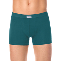 Трусы DiWaRi BASIC SHORTS MSH 700